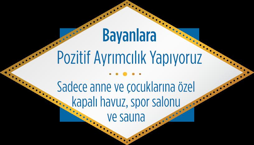 s6-yazi2